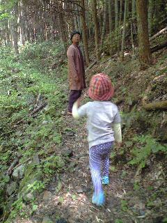 森に行きたい